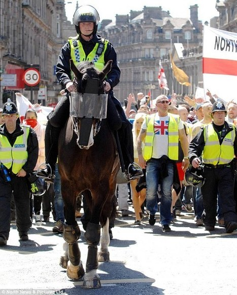 Bud, Britain's bravest police horse, returns to duty after being punched by football thug | Horses | Scoop.it