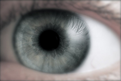 Phantom Eye Patients See and Feel with Missing Eyeballs - Inkfish | The brain and illusions | Scoop.it