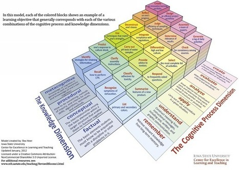 eLearning Guild Research: Reconsidering Bloom's Taxonomy (Old AND New) by Patti Shank : Learning Solutions Magazine | Distance Ed Archive | Scoop.it