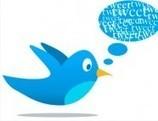 ¿Existe algún diccionario que incluya la palabra 'tweet'? | Perdiendo el miedo a la tecnologia | Scoop.it