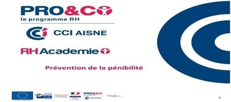RH Académie – La pénibilité au travail - Ressources Humaines Aisne - Proetco.fr | Actu RH - Pro&Co | Scoop.it