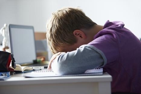 Diez consejos para enfrentarse al Ciberbullying - ComputerHoy.com | Educacion, ecologia y TIC | Scoop.it