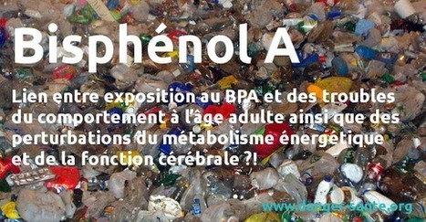 Bisphénol A (BPA) : Nouveau danger potentiel concernant ce polluant | Toxique, soyons vigilant ! | Scoop.it