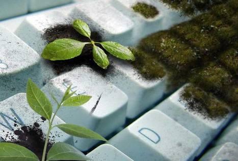 Quels progrès réalisés pour l'environnement ? | Idées responsables à suivre & tendances de société | Scoop.it