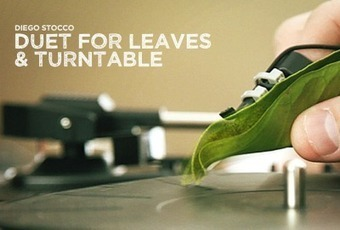 Duet For Leaves & Turntable | New Music Technology | Scoop.it