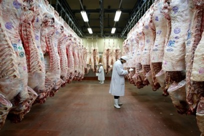The meat industry's worst nightmare could soon become a reality | Tannery | Scoop.it