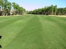 USGA: Florida | Turf Maintenance | Scoop.it