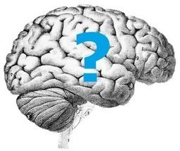 Reliability of Neuroscience Research Questioned | Your Brain and You | Scoop.it