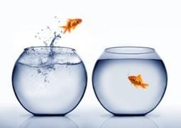 Le manager de demain est un coordinateur ! | Inspiring Art Management | Scoop.it