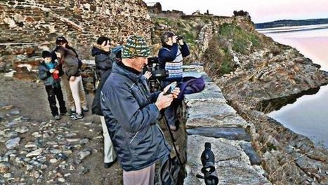 Apuesta por el turismo ornitológico a orillas del río Tormes | GeoActiva Turismo de Aventura | Scoop.it