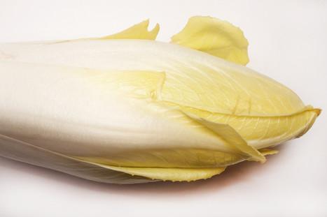 Pas d'obésité parmi les adeptes du bio - Observatoire des aliments | Ambassadeurs NutriNet-Santé | Scoop.it