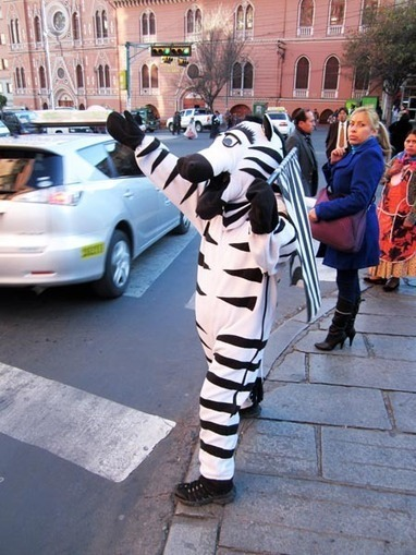¿Golpear cebras se considera maltrato animal? « Nerds All Star | Pablo Galgo | Scoop.it