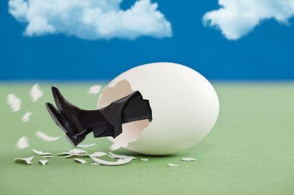 4 idées pour décider comment transformer son entreprise | Le Zinc de Co | Scoop.it