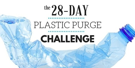 Take the 28-Day Plastic Purge Challenge | Marine Litter | Scoop.it