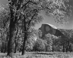 In the Footsteps of Ansel Adams | L'actualité de l'argentique | Scoop.it