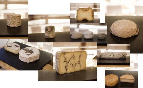 9 fromages à déguster à l'automne | Veille Gastronomie & Oenologie | Scoop.it