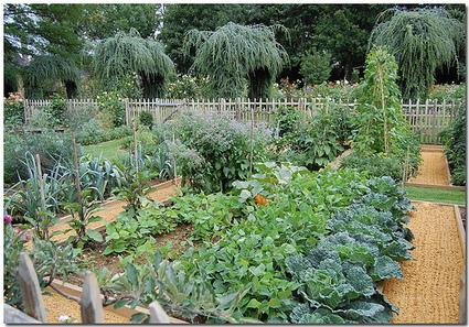 Audio : Cultiver son jardin, un acte criminel ? | Economie Responsable et Consommation Collaborative | Scoop.it