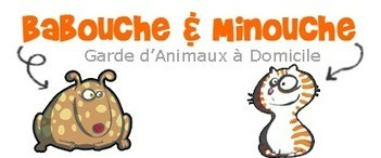 Service de garde d'animaux à domicile dans le 78 | Babouche et Minouche | Garde d'animaux à domicile Yvelines | Scoop.it