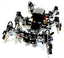 For a robot, control is good, freedom is better and a chaotic system will stabilize itself   Amazing Science   Scoop.it