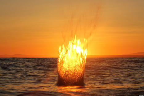 Boule de feu ou coucher de soleil? | Photographisme | Scoop.it
