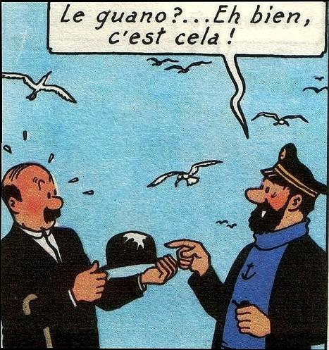 Lettre ouverte à Monsieur Guaino sur les mariages | 694028 | Scoop.it