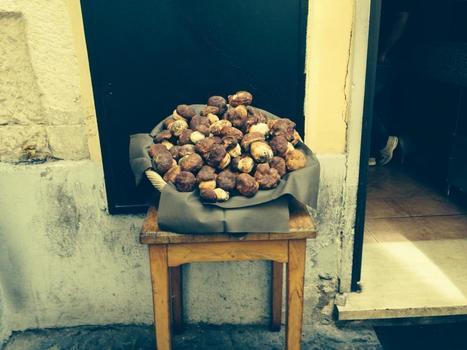 porcini che passione!!!!! | Ristorante Roma | Scoop.it