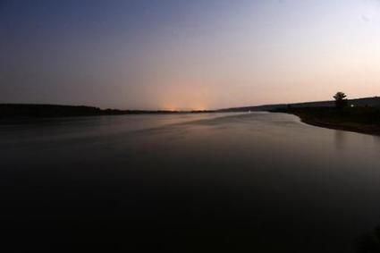 WWF releases 11,000 sturgeons to restock Danube | Conservation | Scoop.it