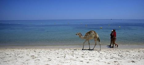 #Tourisme : les pays #arabes désertés par les vacanciers   ALBERTO CORRERA - QUADRI E DIRIGENTI TURISMO IN ITALIA   Scoop.it