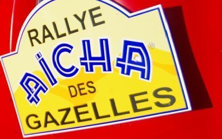 Les MajunGazelles N° 144 au Rallye Aïcha des Gazelles 2013 | MajunGazelles | Scoop.it
