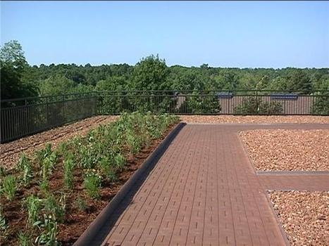 Missouri Department of Conservation debuts new green roof | Vertical Farm - Food Factory | Scoop.it