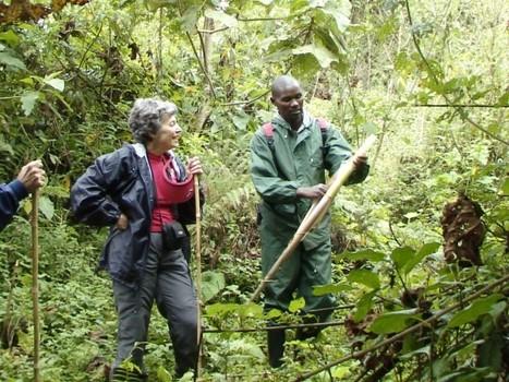Poachers Turned Park Rangers: Local Profits In Saving Rwanda's National Parks | History 101 | Scoop.it