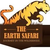 Tanzania Tours | Wildlife Tanzania Safari from Theearthsafari.com | Find the Wild Animals | Scoop.it