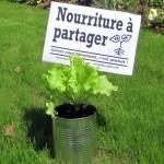 Les Incroyables Comestibles | biodiversité en milieu urbain | Scoop.it