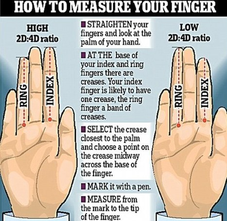 The length of your FINGERS can show if you're anxious or athletic | Dyslexia, Dyspraxia, ADD, ADHD, LD, Autism (etc. conspiracy labels out there)  Education Tools & Info | Scoop.it