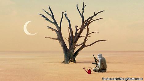 Has the Arab spring failed? | Social Brain, Social Mind | Scoop.it