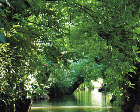 Embarquez pour le Marais poitevin, la Venise verte... | Aunis Marais Poitevin et la Presse | Scoop.it