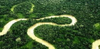 Équateur: Rafael Correa autorise l'exploitation pétrolière dans le parc de Yasuni | Climat | Scoop.it