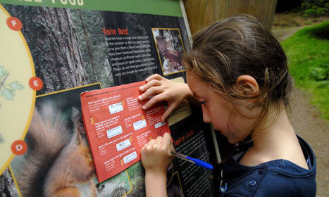 England's forests: you're never too young for orienteering | Children | Scoop.it