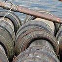 La Chine ouvre son enquête antidumping sur les vins de l'Union européenne | Le vin quotidien | Scoop.it