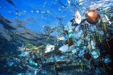 Mediterrâneo está a transformar-se lentamente num aterro sanitário gigante | Coordenadas | Scoop.it
