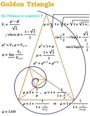 1,1,2,3,5,8...The Golden Ratio | Amazing Science | Scoop.it