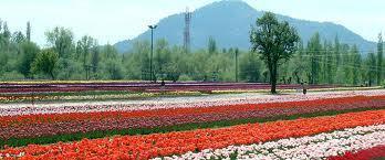 Jannat- E - Kashmir Srinagar, Gulmarg, Pahalgam,Sonamarg | Jammu Kashmir India | Scoop.it