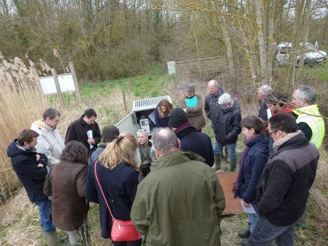 Dépollution des eaux agricoles : une mare innovante réunit les acteurs du territoire   Irstea   Environnement actus   Scoop.it