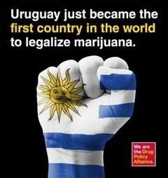 Marijuna legal states   Largest USA   Marijuana - Bongs - 420 - Funstuff - Cannabis   Scoop.it