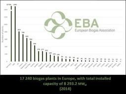 European Biogas Association releases biogas, biomethane report | Bio-Feedstock | Scoop.it