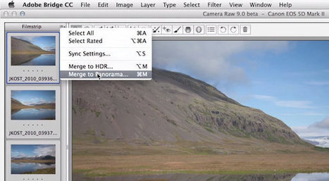 Adobe Discreetly Unveils 'Camera Raw 9' In Photoshop | Artdictive Habits : Sustainable Lifestyle | Scoop.it