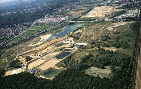 Flins - Aubergenville : de nouveaux usages agricoles pour préserver l'eau | Agronomie, élevage, eau et sol - Montpellier SupAgro | Scoop.it