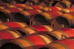Is Bordeaux 2011 Really Better Than 2008? | The Authentic Food & Wine Experience | Scoop.it