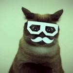 Un clic un perché: i 5 virali della settimana | Sei gradi | WEBOLUTION! | Scoop.it