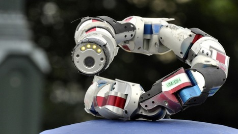 The Evolution of the Bioinspired Robot | hidemyass | Scoop.it